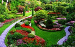 11 Consejos para cuidar vuestro jardín en primavera
